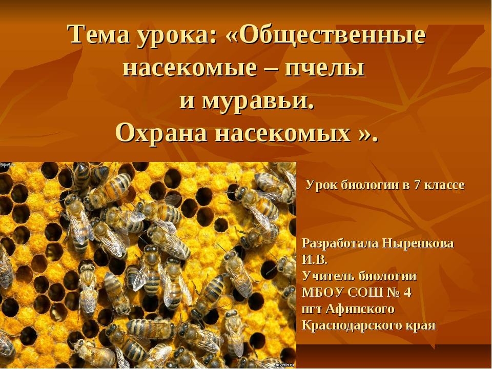 Тема урока: «Общественные насекомые – пчелы и муравьи. Охрана насекомых ». У...