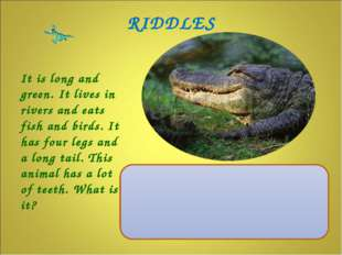 It is long and green. It lives in rivers and eats fish and birds. It has four