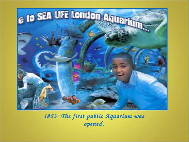 1853- The first public Aquarium was opened.