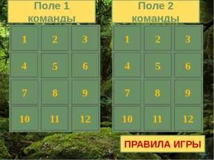 3 2 1 4 Через какую из точек проходит график функции у=3х+2 1) А(3;5) 2) В(8