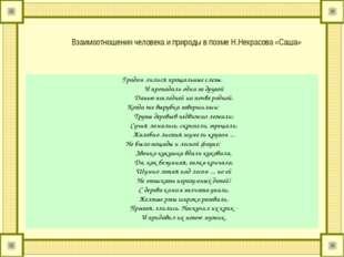 Взаимоотношения человека и природы в поэме Н.Некрасова «Саша» Градом лилися п