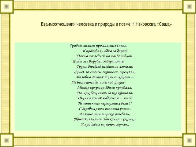Взаимоотношения человека и природы в поэме Н.Некрасова «Саша» Градом лилися п...