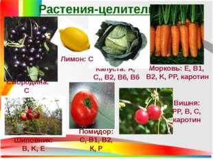Растения-целители Смородина: С Капуста: А, C,, B2, B6, B6 Морковь: Е, B1, B2,