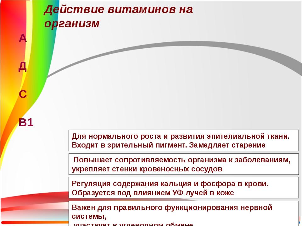 Действие витаминов на организм А Д С В1 Регуляция содержания кальция и фосфор...