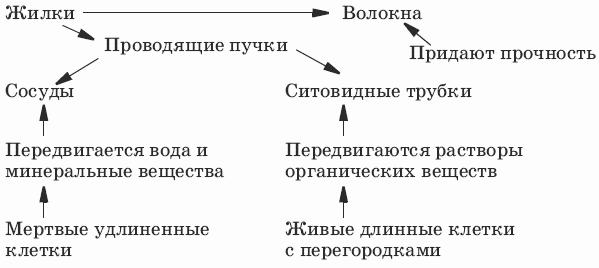 http://modernlib.ru/books/benuzh_elena/testi_po_biologii_6_klass/i_047.png