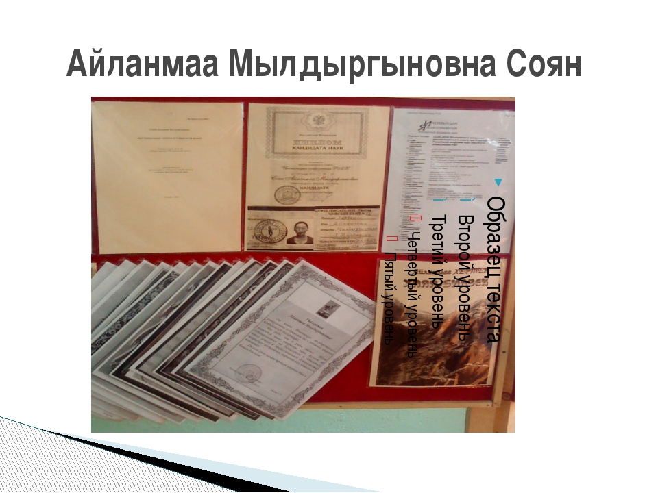 Айланмаа Мылдыргыновна Соян