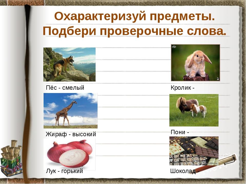 Охарактеризуй предметы. Подбери проверочные слова. Пёс - смелый Кролик - Жира...