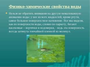 Физико-химические свойства воды Нельзя не обратить внимания на другую немалов