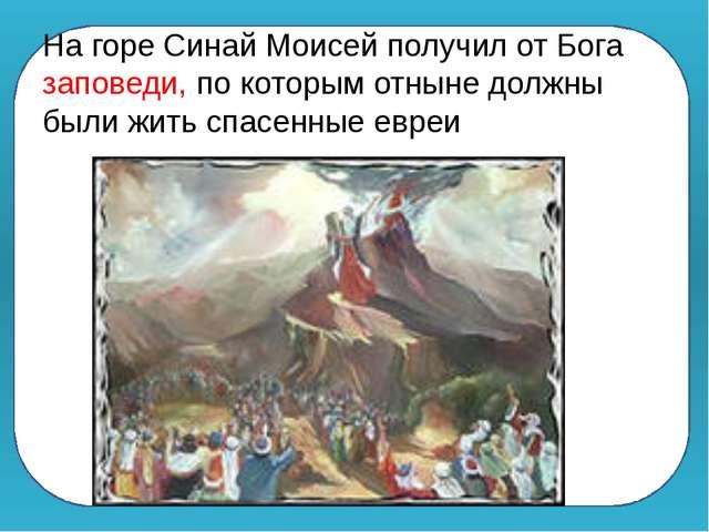 На горе Синай Моисей получил от Бога заповеди, по которым отныне должны были...