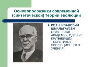 Основоположники современной (синтетической) теории эволюции ИВАН ИВАНОВИЧ ШМА
