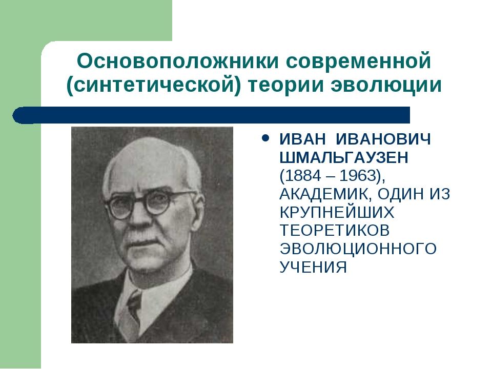 Основоположники современной (синтетической) теории эволюции ИВАН ИВАНОВИЧ ШМА...