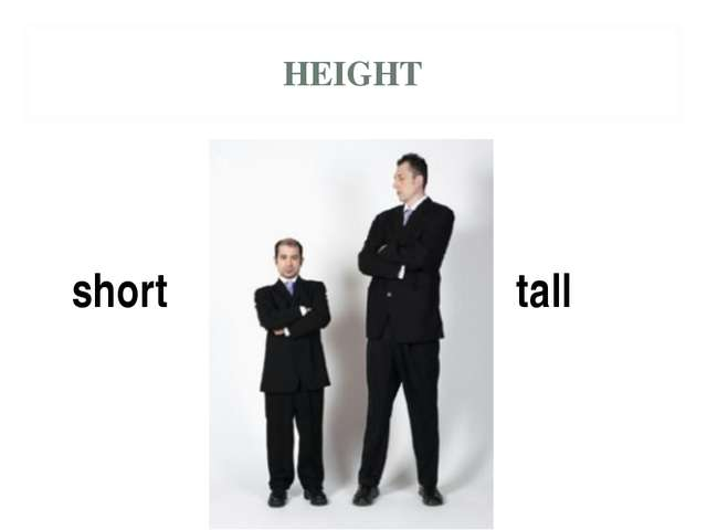 HEIGHT short tall