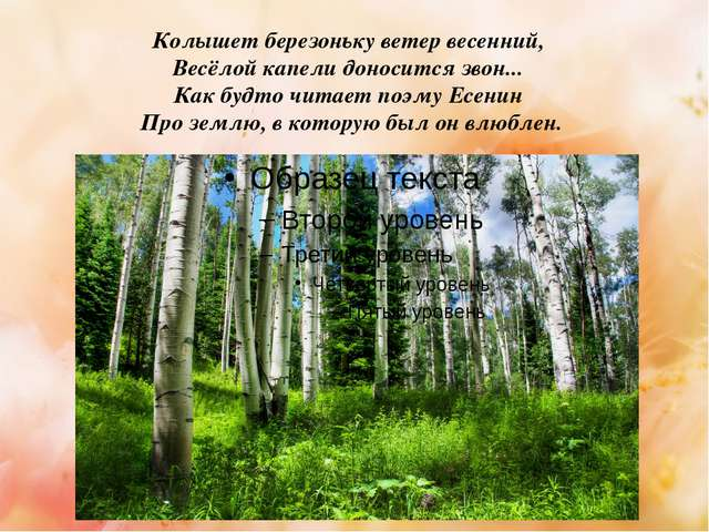 Колышет березоньку ветер весенний, Весёлой капели доносится звон... Как буд...