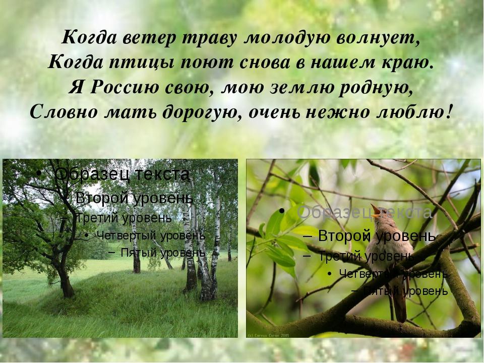 Когда ветер траву молодую волнует, Когда птицы поют снова в нашем краю. Я Рос...