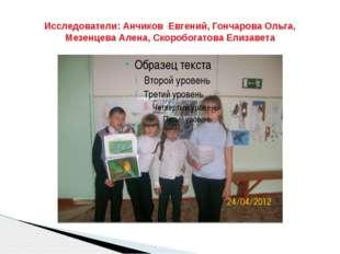 Исследователи: Анчиков Евгений, Гончарова Ольга, Мезенцева Алена, Скоробогато