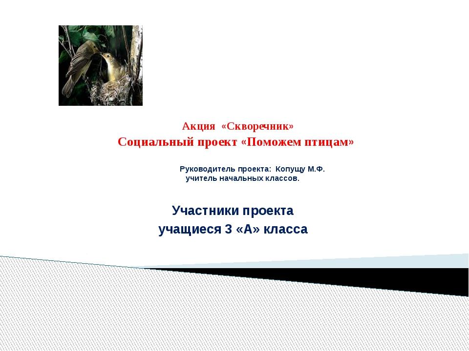 Акция «Скворечник» Социальный проект «Поможем птицам» Руководитель проекта:...