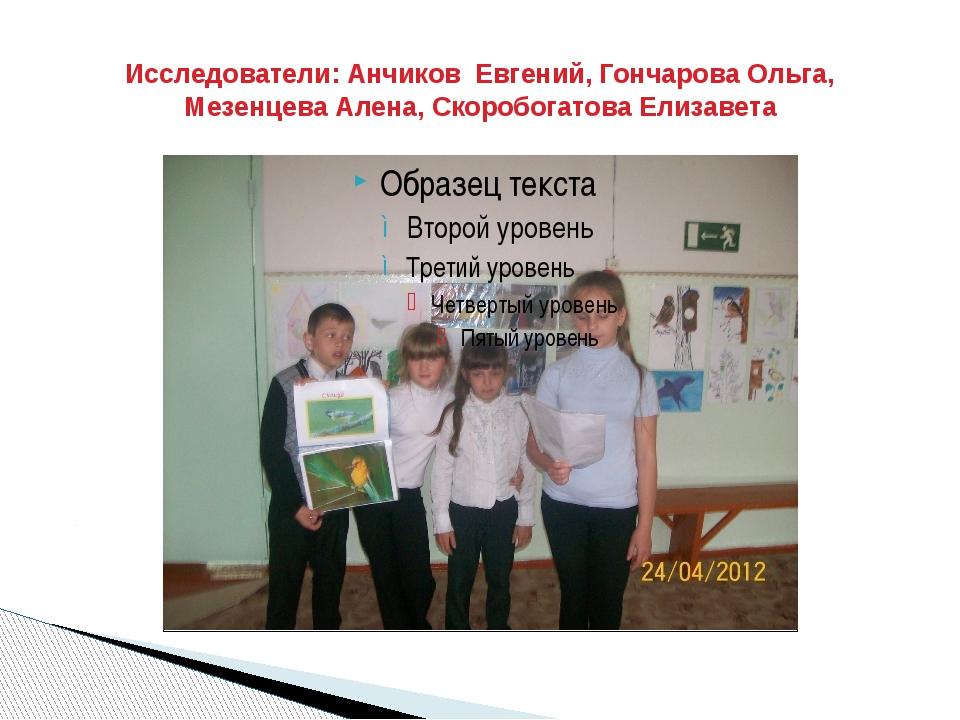Исследователи: Анчиков Евгений, Гончарова Ольга, Мезенцева Алена, Скоробогато...