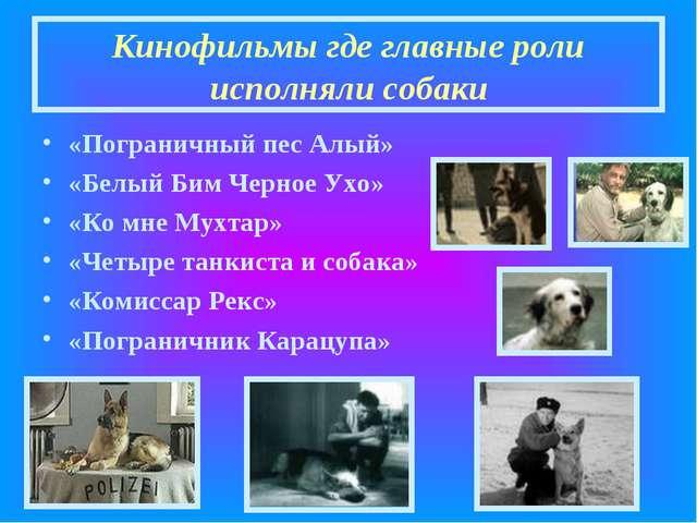 Кинофильмы где главные роли исполняли собаки «Пограничный пес Алый» «Белый Би...
