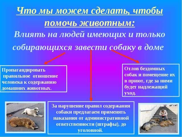 Что мы можем сделать, чтобы помочь животным: Влиять на людей имеющих и только...