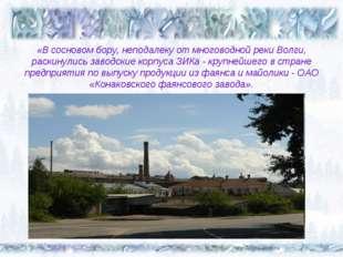 «В сосновом бору, неподалеку от многоводной реки Волги, раскинулись заводские