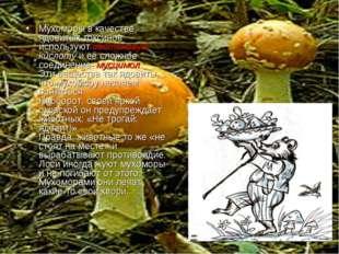 Мухоморы в качестве ядовитых токсинов используют иботеновую кислоту и её сло
