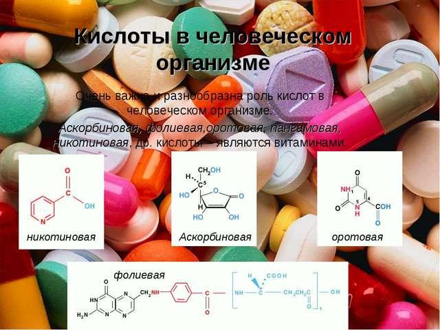 Кислоты в человеческом организме Очень важна и разнообразна роль кислот в чел...