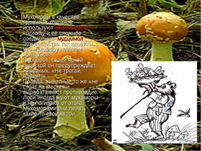 Мухоморы в качестве ядовитых токсинов используют иботеновую кислоту и её сло...