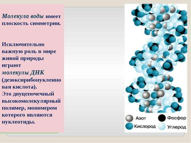 Молекула воды имеет плоскость симметрии. Исключительно важную роль в мире жив...