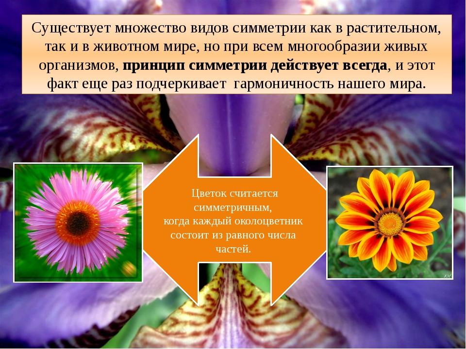 . Существует множество видов симметрии как в растительном, так и в животном м...