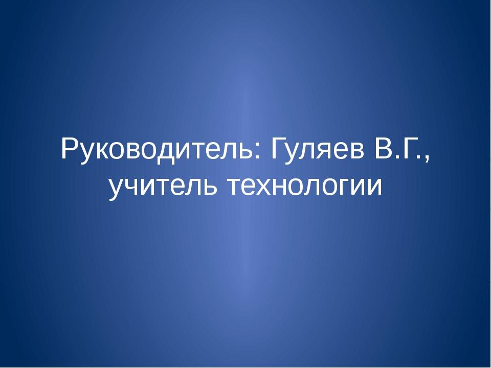 Руководитель: Гуляев В.Г., учитель технологии