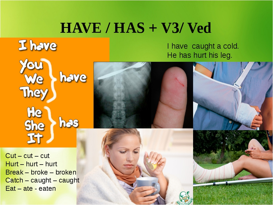HAVE / HAS + V3/ Ved I have caught a cold. He has hurt his leg. Cut – cut –...