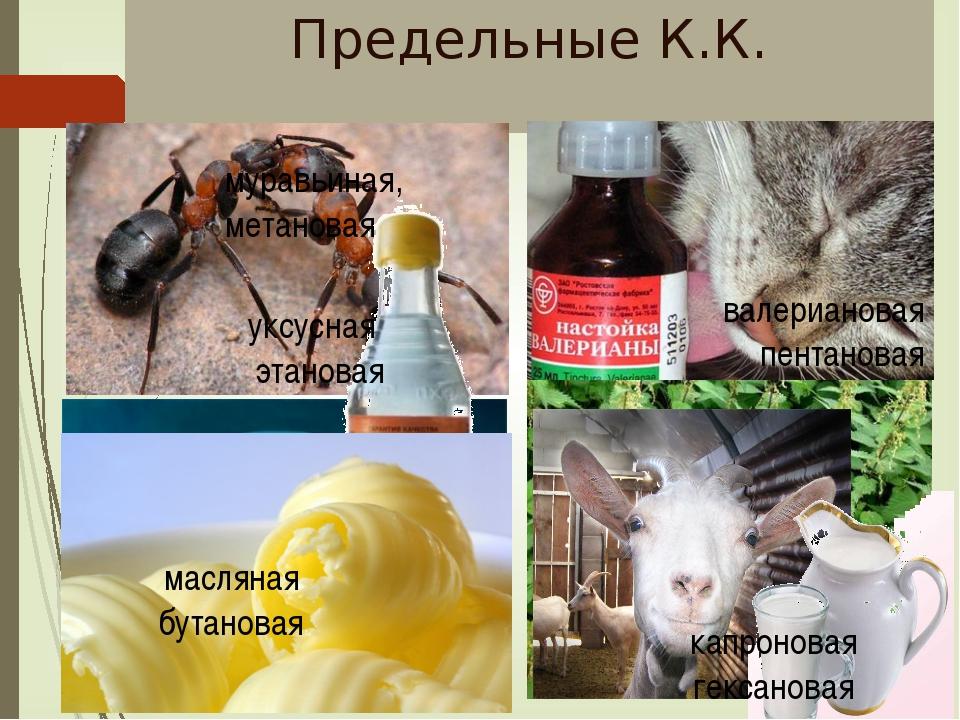 К.К.-витамины аскорбиновая кислота витамин В9