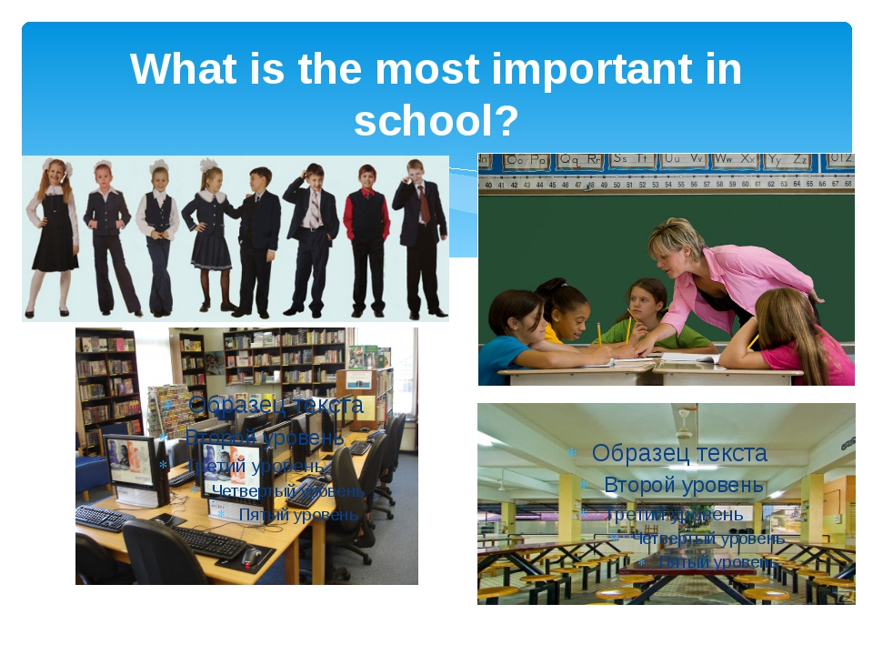 What is the most important in school?