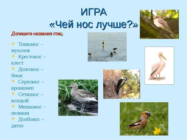 ИГРА «Чей нос лучше?» Допишите названия птиц. Тонконос – мухолов Крестонос –...