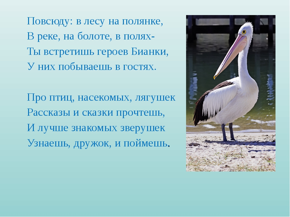 Повсюду: в лесу на полянке, В реке, на болоте, в полях- Ты встретишь героев Б...