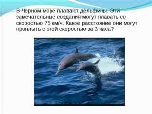 В Черном море плавают дельфины. Эти замечательные создания могут плавать со