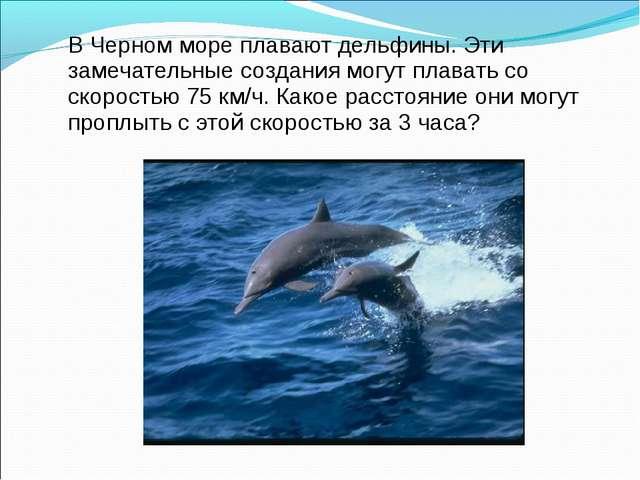 В Черном море плавают дельфины. Эти замечательные создания могут плавать со...