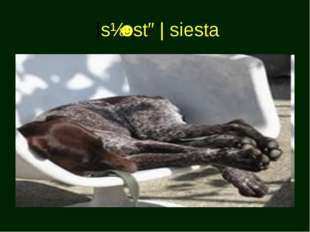 |sɪˈestə| siesta