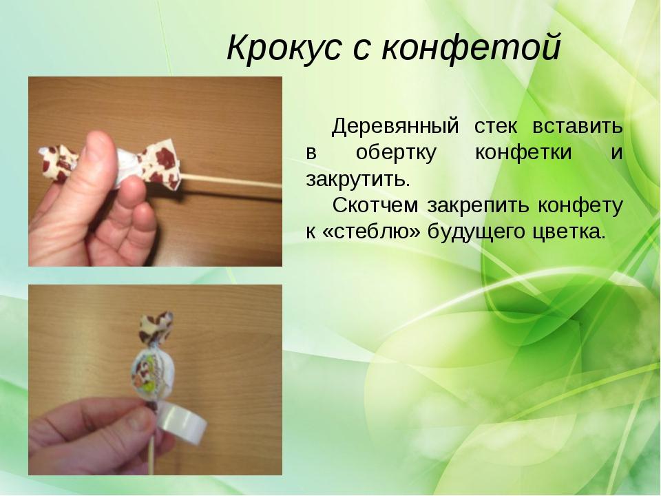 Крокус с конфетой Деревянный стек вставить в обертку конфетки и закрутить. Ск...