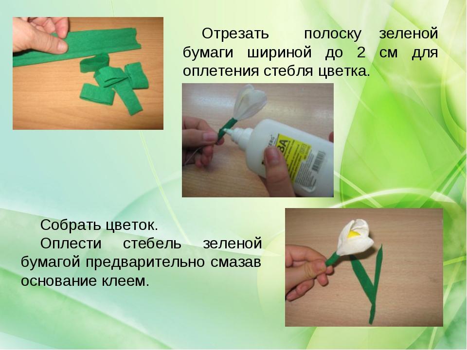 Отрезать полоску зеленой бумаги шириной до 2 см для оплетения стебля цветка....