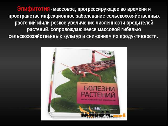 Эпидемии эпизоотии и эпифитотии доклад 931