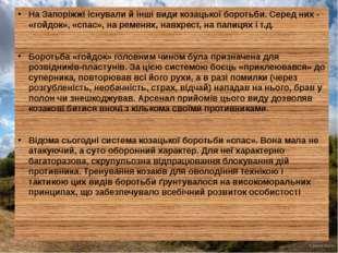 На Запоріжжі існували й інші види козацької боротьби. Серед них - «гойдок»,