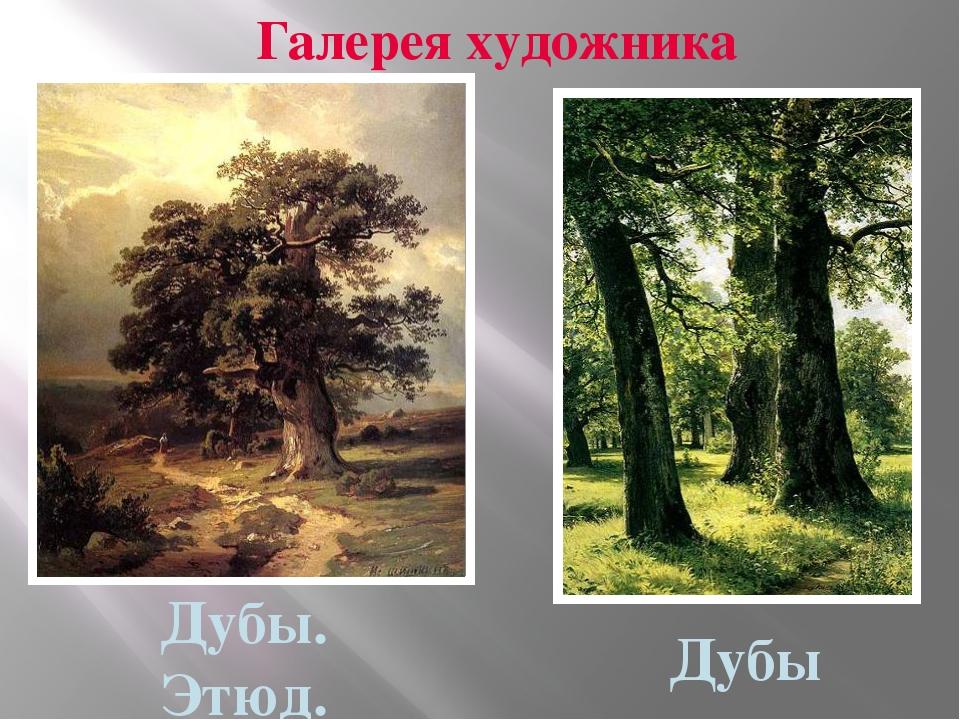 Галерея художника Дубы Дубы. Этюд.