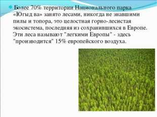 Более 70% территории Национального парка «Югыд ва» занято лесами, никогда не