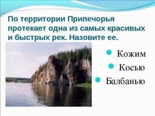 По территории Припечорья протекает одна из самых красивых и быстрых рек. Назо