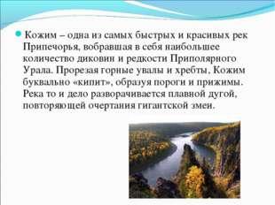 Кожим – одна из самых быстрых и красивых рек Припечорья, вобравшая в себя наи