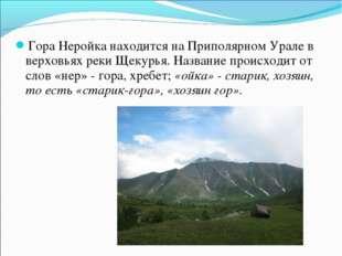 Гора Неройка находится на Приполярном Урале в верховьях реки Щекурья. Названи