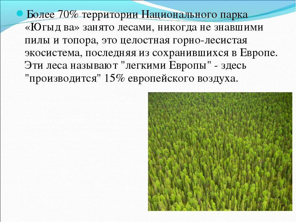 Более 70% территории Национального парка «Югыд ва» занято лесами, никогда не...