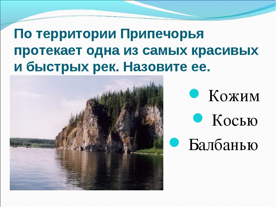 По территории Припечорья протекает одна из самых красивых и быстрых рек. Назо...