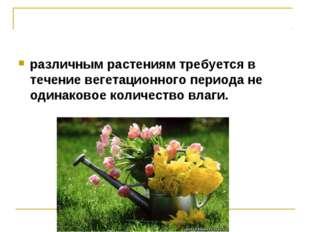 различным растениям требуется в течение вегетационного периода не одинаковое